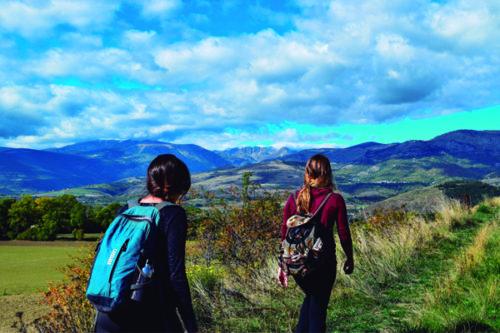 Etapas del camino de Santiago en Navarra